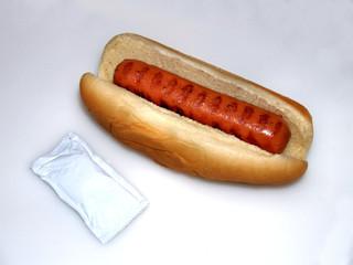 Hotdog and Condiment