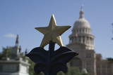 Star on the Gate of the Texas State Capitol poster