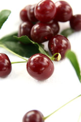 Red Cherry isolated in White Background