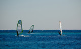 Windsurfing in the Red Sea