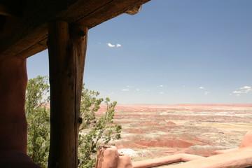 Wüste, Arizona, USA