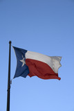 Texas State Flag poster