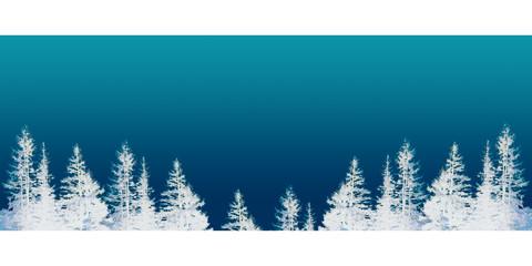 Sapins hiver