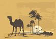 roleta: desert