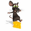 Mouse - Swiss Cheese