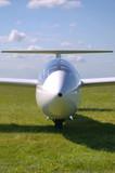 Glider portrait