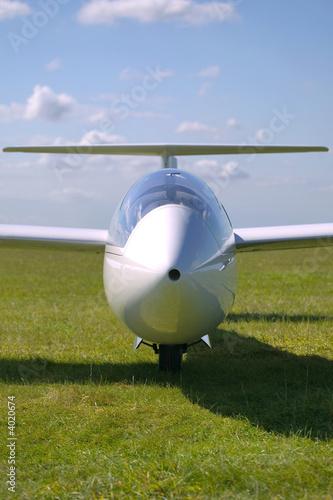 Glider portrait - 4020674