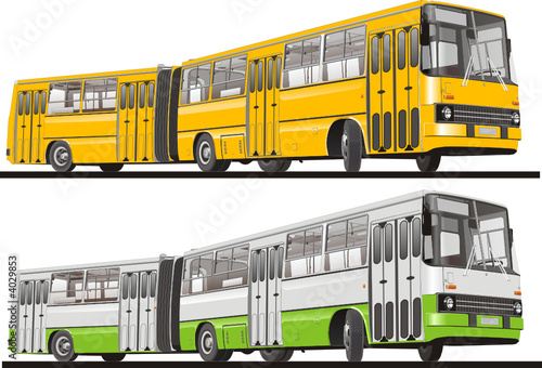 Vector City Bus Articulated
