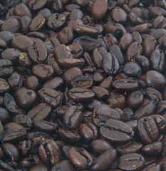 Background image of roasted coffee beans