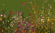 Постер, плакат: Gustav Klimt Flowers