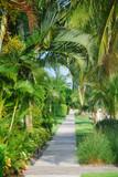Tropical park walkway poster