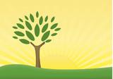 sole albero poster