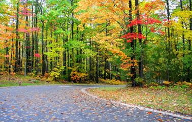 Autumn Time