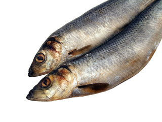 two herrings