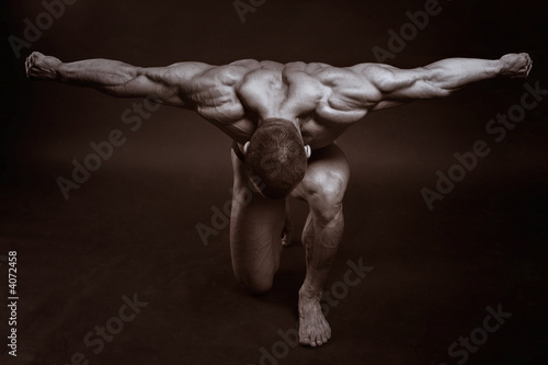 The muscular male - 4072458