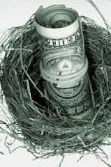 Roll of dollars in nest. Monochrome.
