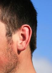 Ear hearing