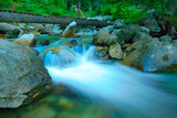 Fototapety River Demjanica rushing through the forest in national park