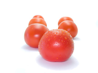 Red tasty isolated tomatoes