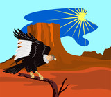 Andean condor perched on a branch with mesa poster