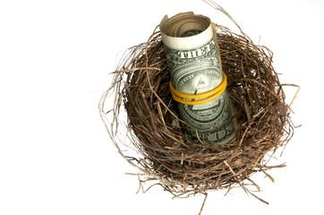 Roll of dollars in nest
