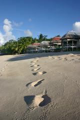 Strand auf der Nordinsel von Western Samoa