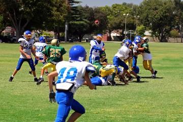 Football Flying