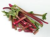 rhubarb stems poster