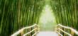Fototapeten,bambus,straßen,china,zielen