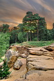 August Landscape with stones and pine forest poster