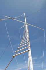 Ladder up Mast