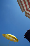 Yellow parasols on beach poster