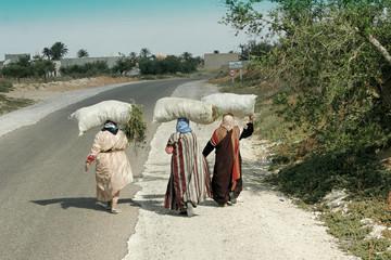 femmes portant du fourrage à pied