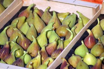 cagette de figues
