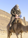 Grandfather tourist on camel poster