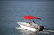 White Whaler Red Canopy