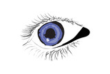 Vector of Persons Blue eye poster