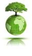 Planète terre végétale avec reflet