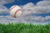 Baseball after impact with grass poster
