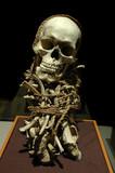 Ancient inca mummy poster