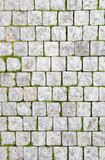 Stone pavement with green grass poster