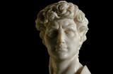 Replica of David in Marble poster