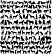 hundreds of silhouettes of dogs