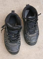 Painter Shoes