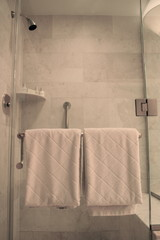 Plush White Towels on Rack on Glass Shower in Bathroom