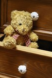 Lovely brown bear in of chest of drawers poster