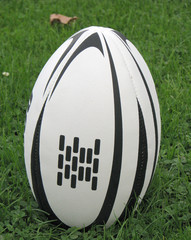 rugby 10
