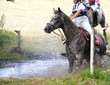 Horse Trials Water