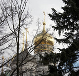 Gold Moscow Kremlin domes behind graphic black branchs