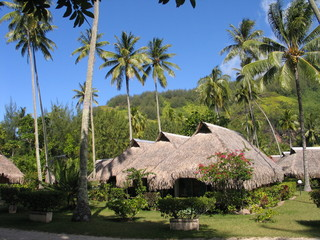 Resort on Moorea island